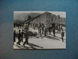 Démonstration De Stockage  Du Maïs  -  1950  -  La Fabuleuse Histoire Du Maïs  -  Pierre  Lheure  - - Landwirtschaftl. Anbau