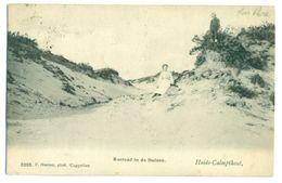 Kalmthout - Hoelen 3203 - Rustend In De Duinen - Heide-Calpmthout - Kalmthout