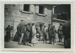 Eléphant Dolly Passant La Douane Suisse Au Col Du Grand Saint-Bernard 1935 . Ecrivain Et Aventurier Richard Halliburton - Orte
