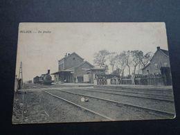 Belgique  België  ( 3565 )     Melden   Statie   Gare   Station  Trein   Train - Oudenaarde