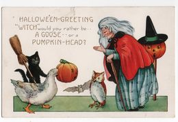 HALLOWEEN GREETING * OIE/GOOSE * CHAT * CHOUETTE/HIBOU * CITROUILLE * SORCIERE *BALAI * CHAUVE SOURIS * - Halloween