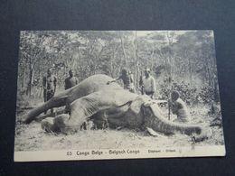 Congo Belge ( 295 )  Belgisch Kongo    éléphant  Olifant  - Entier Postal N° 53 - Belgian Congo - Other