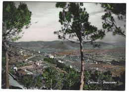 6785 - CORTONA AREZZO PANORAMA 1954 - Other Cities