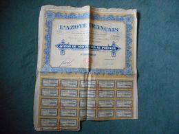 5 Actions De 100 Francs L'AZOTE FRANCAIS - 1926 - Electricité & Gaz