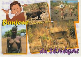 2025-912   Nu Af Noire  Sénégal   La Vente Sera Retirée  Le 05-07 - Afrique Du Sud, Est, Ouest