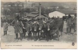 15 Cantal Pittoresque  Groupe De Vaches Laitières - Ohne Zuordnung