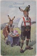 Arthur Thiele,Rabbit,Konijn,Haas, Hare,Lapin, Hase, Lepre ..super Cute!Paypal Okay! - Thiele, Arthur