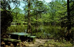 Louisiana Lake Providence State Park Picnic & Recreation Hall On Banks Of Tensaco Bayou - Etats-Unis