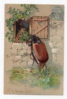 HANNETONS * HANNETON * HUMANISES * MAISON * VOLET * Carte Gaufrée - Insekten