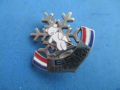 Médaille Sport/ESF/ Ecole Du Ski Française/Flocon Avec Ourson/Jardin D'Enfants/DECAT/Paris/Vers1970-1980 SPO251bis - Invierno