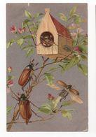 HANNETONS * HANNETON * ARBRE/MAGNOLIA * MAISONNETTE  * HUMANISES * Carte Argentée - Insecten