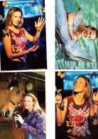 Fan Club De LORIE Chanteuse, Panini, Animaux, Cheval, Papillons, Dauphin,  N° 1, 72, 8 Et 63, Album, Lot De 4 Photos - Fotos