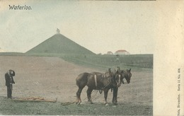 Waterloo - Waterloo