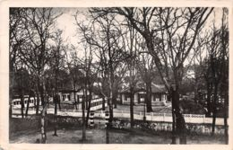 33-ANDERNOS LES BAINS-N°3884-E/0343 - Andernos-les-Bains