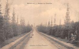 41-BEAUVAL-N°3892-F/0117 - France
