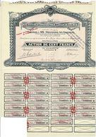 Titre Ancien - Société Des Chaussures EHRLICH Frères - Titre De 1928 - - Textile