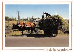 ILE DE LA RÉUNION►97►CPM►1994►ATTELAGE►CHARETTE DE CANNES TIRÉE PAR UN BOEUF►CLIN D'OEIL ♥ - Non Classificati