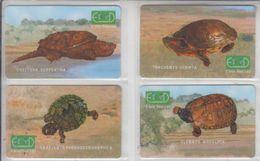 ISRAEL TURTLE SET OF 4 PHONE CARDS - Tartarughe