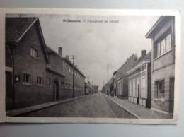 Postkaart St-Laureins Dorpstraat En School - Sint-Laureins