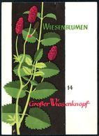 D7416 - DJH Jugendherbergsgroschen Spendenkarte Jugendherberge - Entwurf E. Feuerstein - Heilpflanzen