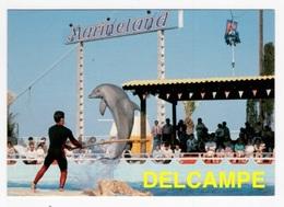DF / ANIMAUX / CÉTACÉS / DAUPHIN AU MARINELAND D'ANTIBES (06) EN 1985 - Delfini