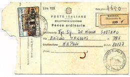 1981 VILLA CAMPOLIETO 100 LIRE SINGOLO ISOLATO AD INTEGRAZIONE BOLLETTINO PACCHI TARGHETTA DA 100 LIRE - 6. 1946-.. Repubblica