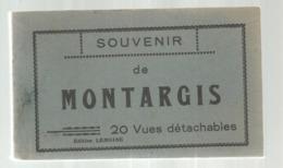 Cp, 45 , SOUVENIR DE MONTARGIS , Ed. Lemoine , CARNET DE 20 CARTES POSTALES - Montargis