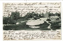 CPA-Carte Postale-Belgique-La Panne Un Coin Dans Les Dunes- En  1906-VM17920 - De Panne