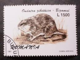 Roumanie > 1948-.... Républiques >    >1991-00 >> Oblitérés  N° 4366 - Usati