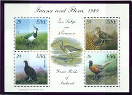 IRELAND  -  1989 Birds Miniature Sheet  Unmounted/Never Hinged Mint - Blocks & Sheetlets