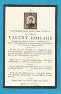IMAGE GENEALOGIE FAIRE PART AVIS DECES BRICARD AVESNES  1906 - Décès