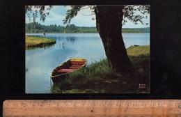 SOUSTONS Landes 40 : L'étang - Soustons
