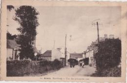 Bz - Cpa ARZON (Morbihan) - Une Des Principales Rues - Arzon