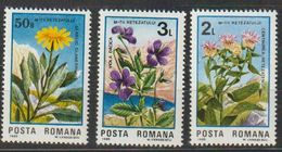 Roumanie. Rumania . Fleurs. Flowers** - Otros