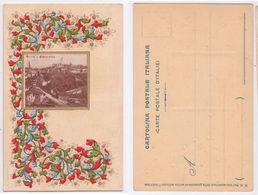 Siena - Panorama, Illustrata, Decoro Floreale, In Rilievo, Cornice Dorata, S. Venturini, Ante 1906 - Uruguay