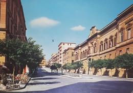 Cartolina - Caltanissetta - Viale Regina Margherita - Palazzo Del Governo - 1973 - Caltanissetta