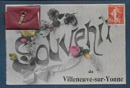 Souvenir De Villeneuve Sur Yonne - Carte à Système ( Dépliant 9 Vues ) - Villeneuve-sur-Yonne