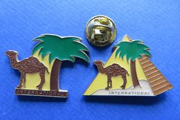 2 Pin's, CAMEL INTERNATIONAL,CAMEAU,PALMIRE,TABAC,CIGARETTES - Marques