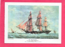 3 Vues Du 1° Voyage  De L'Astrolabe En Terre Adélie 1988 (cachets Et Signature Du Commandant .) - Sammlungen (ohne Album)