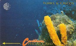 *TURKS & CAICOS  (1CTCB)* - Scheda Usata - Turks And Caicos Islands