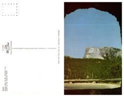 Distant View Of Mt. Rushmore (8722) - Mount Rushmore