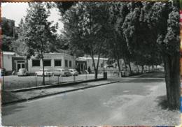 "VW Käfer Ovali,Triumph Herald,Opel Rekord P II,Salo,""Albergo Diana"",Gardasee, Gelaufen - Turismo"