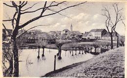 1587/ D - Rosslau Vom Schlossgarten Gesehen, - Rosslau