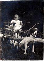 Photo Originale Petite Fille Montée Sur Un Attelage De Chien Avec Faux & Vrai Chien Courant Suisse Vers 1910/20 - Objets