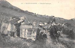 Salins Les Bains         39        Scènes De Vendanges      ( Voir Scan) - France