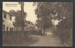 +++ CPA - RHODE SAINT GENESE - Chemin Des Etangs   // - Rhode-St-Genèse - St-Genesius-Rode