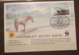Germany 1987 WWF Gedenkblatt / Commemorative Sheet - Brieven En Documenten