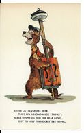 "WALT DISNEY WORLD : ORIGINAL SKETCHES FOR ""THE COUNTRY BEAR JAMBOREE"" - Little Ol' Tennessee Bear. CPSM. - Disneyworld"