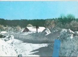 Kiy-  25 Doubs  Cpsm  HAUTES NEIGES Aux ARCES  (janin) - Autres Communes