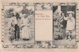*** Costa Rica *** MEMORIAS DE COSTA RICA --- Racimos De Bananos - TTB - Costa Rica